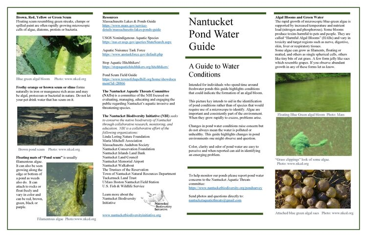 Guide to Pond Water on Nantucket 6_17_20_Page_1.jpg