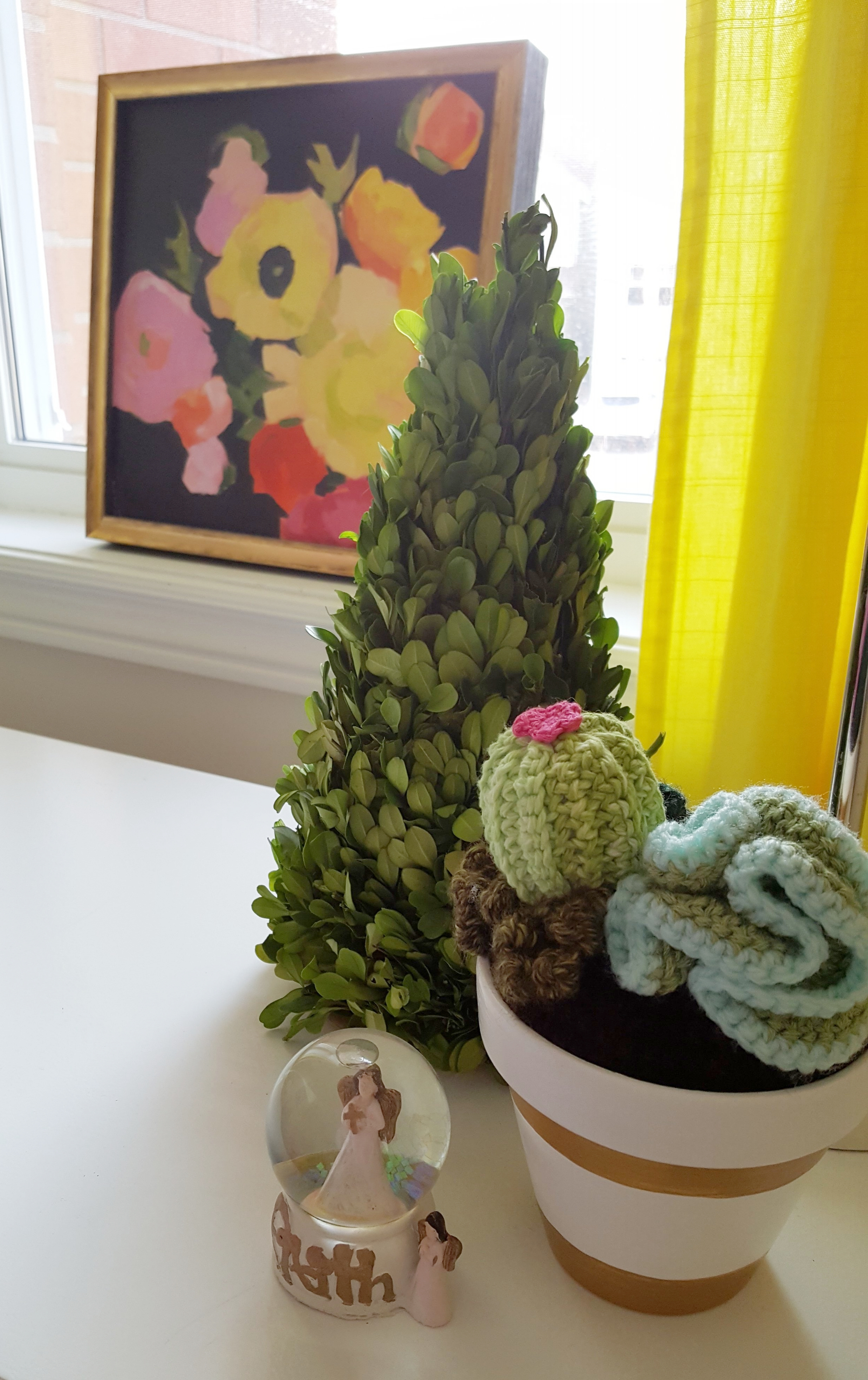 Crocheted cactus from one of our favourite shops in Orillia: Harold & Ferne