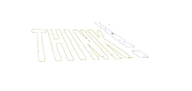 DFT_Think_End_Frames_Logo_NoBG copy.png