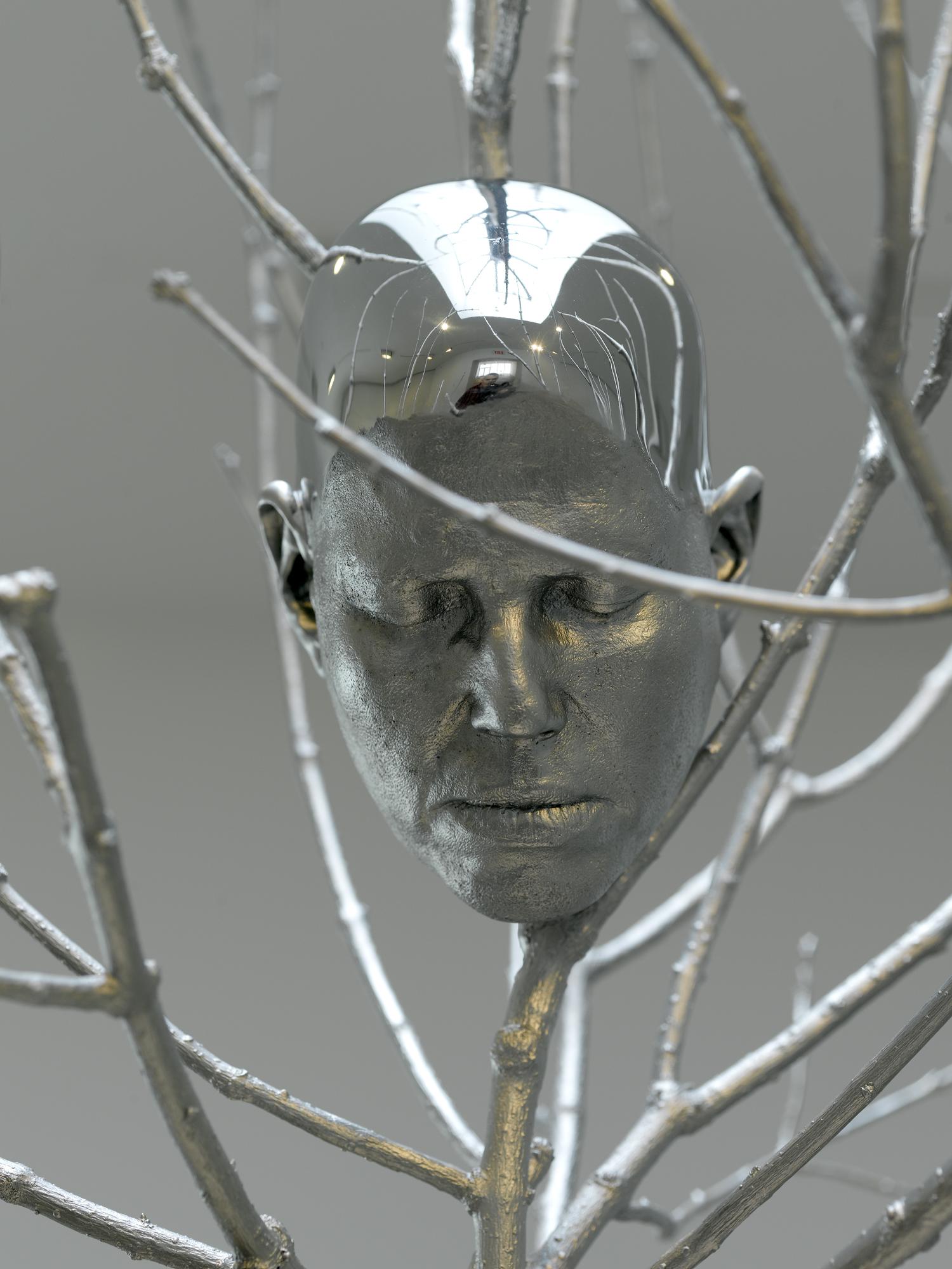 02_head_in_tree.jpg