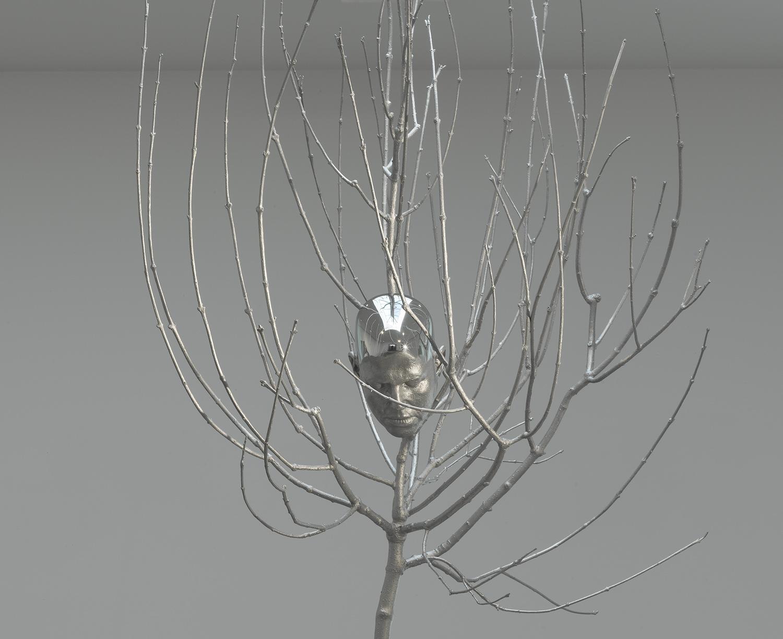 03_head_in_tree.jpg
