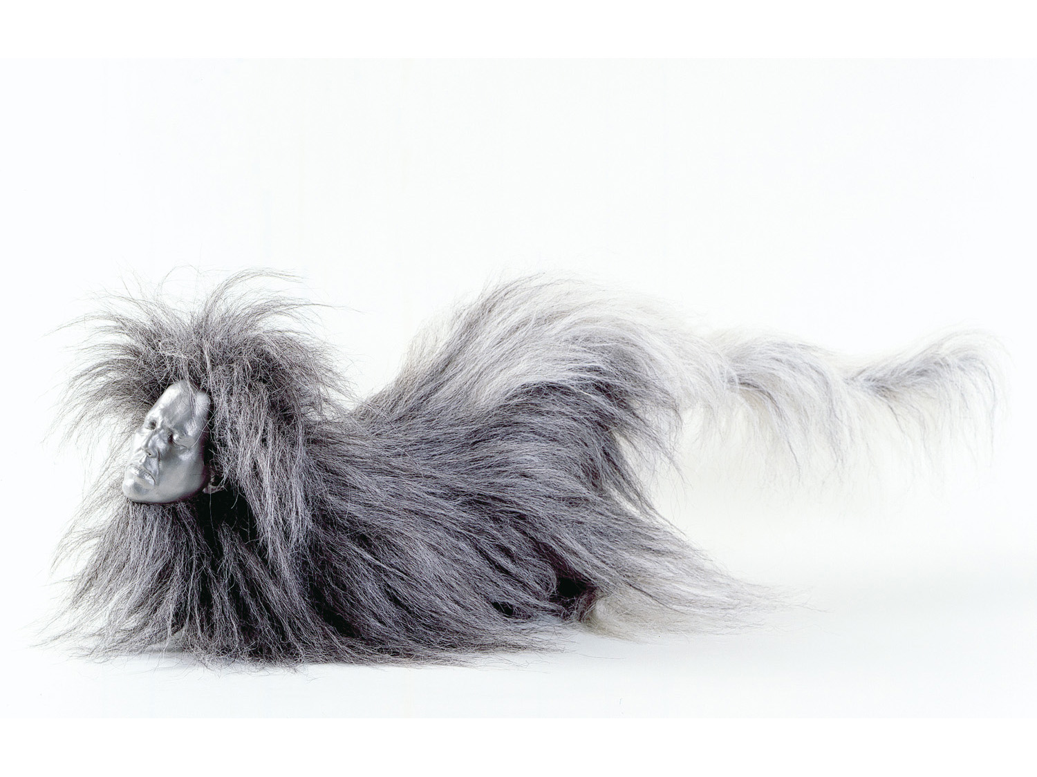 01_monkey_with_hair_grey_with_white_tail_new.jpg