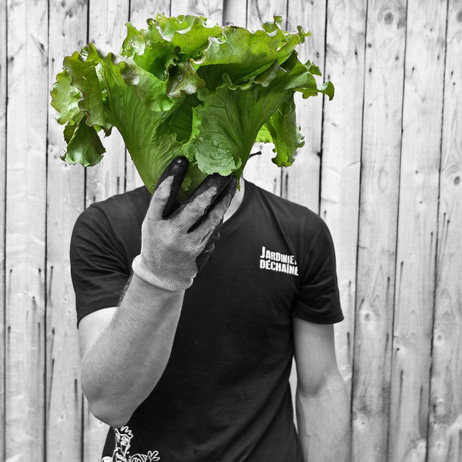 jardinier-dechaine.jpg