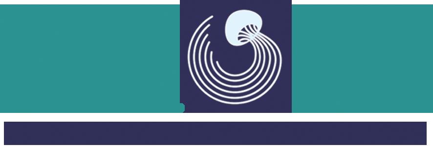 FLOW Logo 4.png