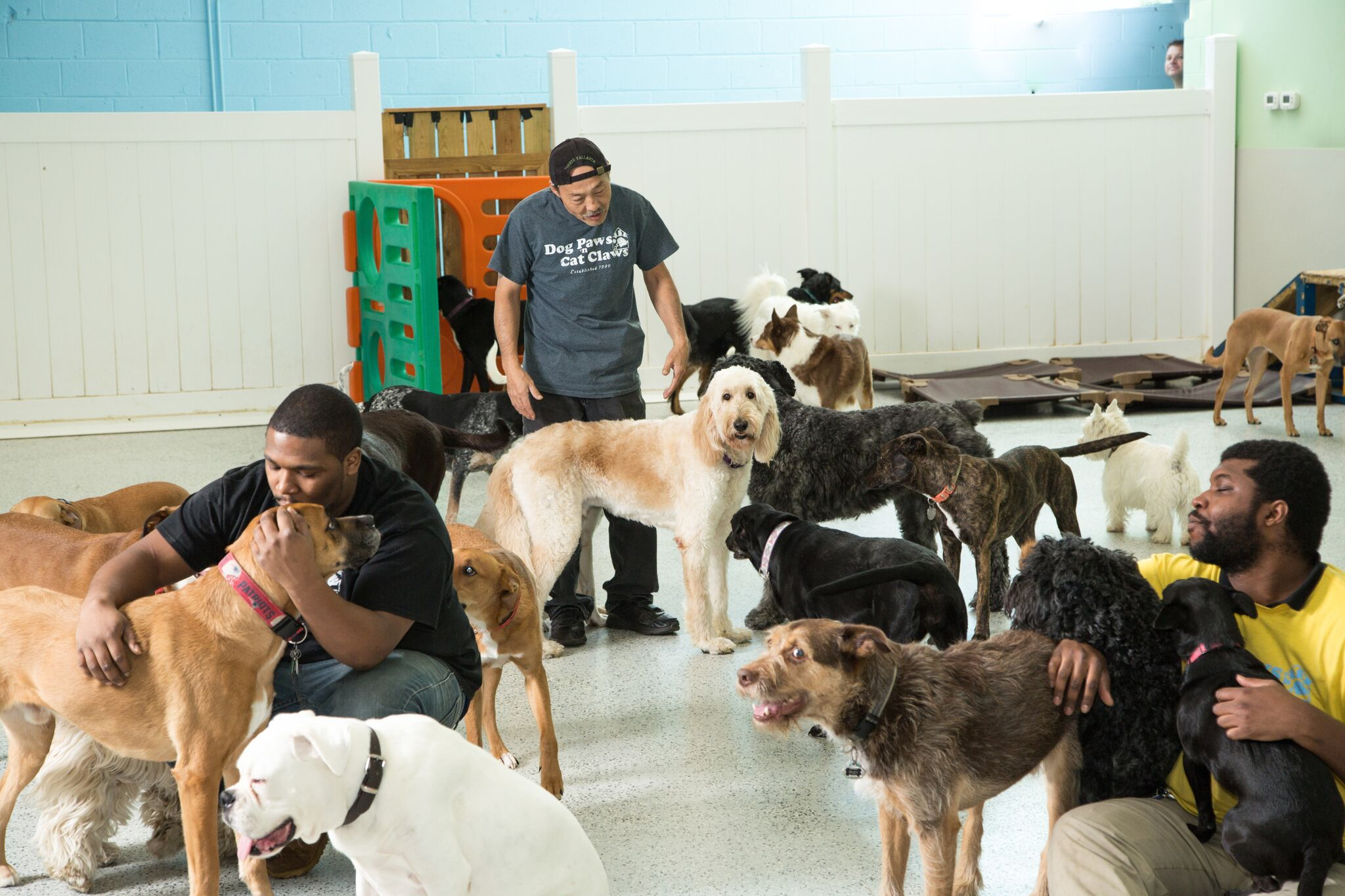 Daycare Staff & Dogs