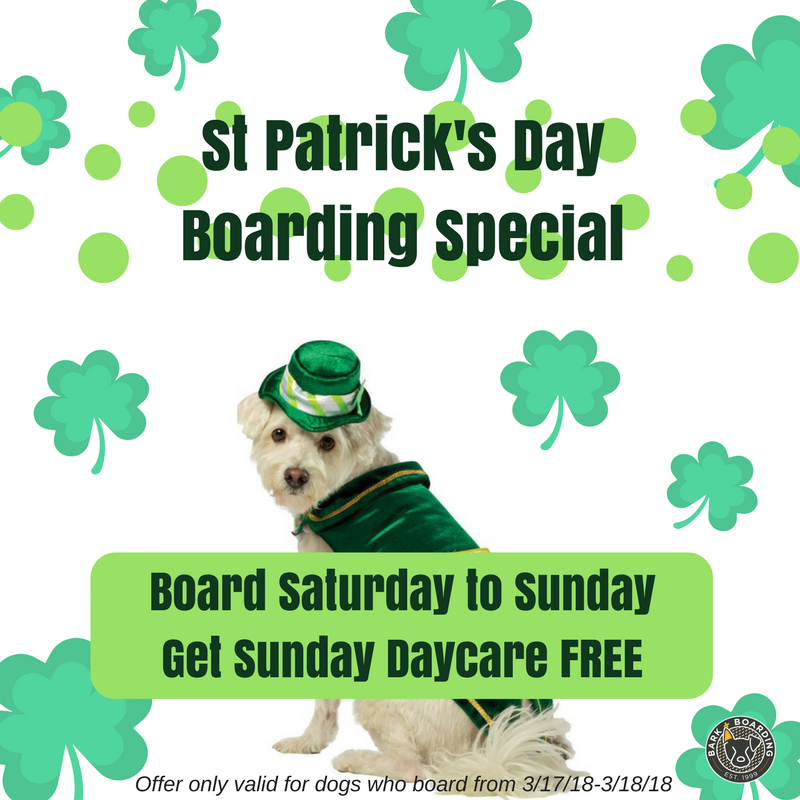 St Patricks Day Boarding Special.png