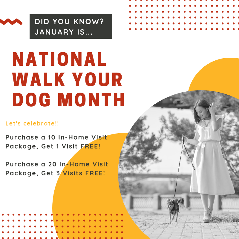 National walk your dog month.png