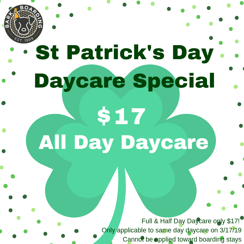 St Patricks Day Daycare Special.png
