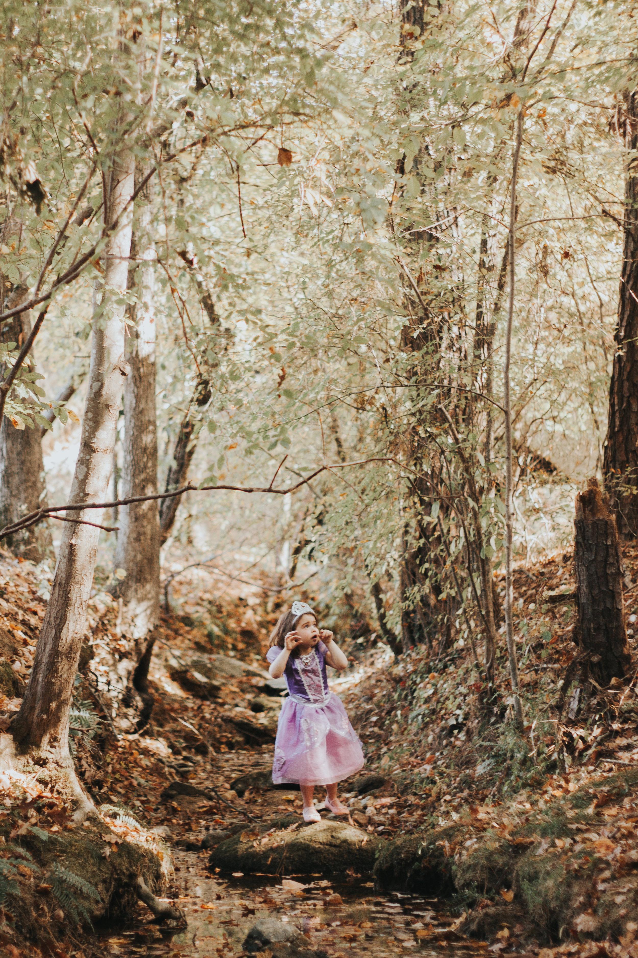 Princess_Sofia (91 of 95).jpg