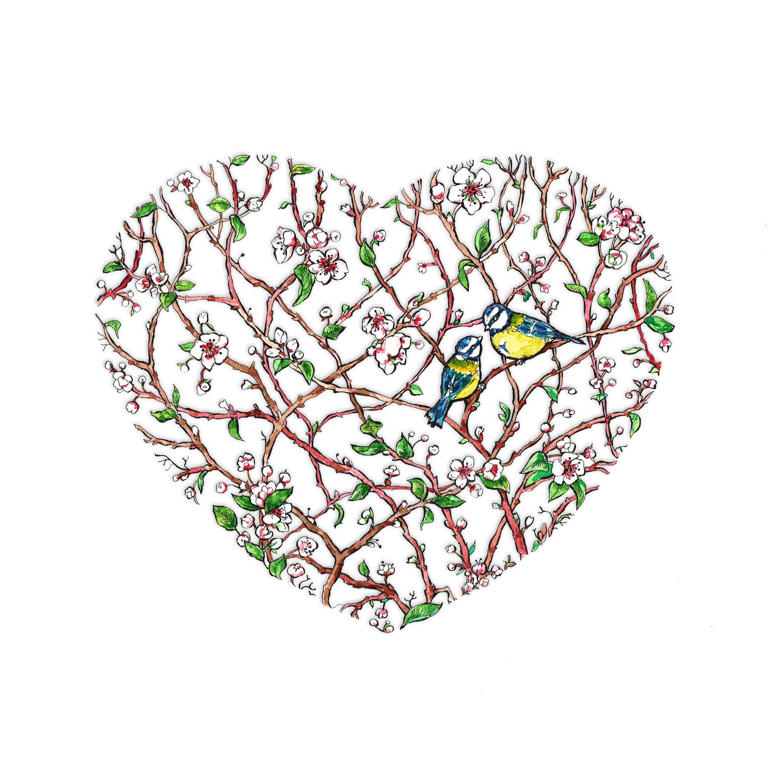 bluetits_heart.jpg