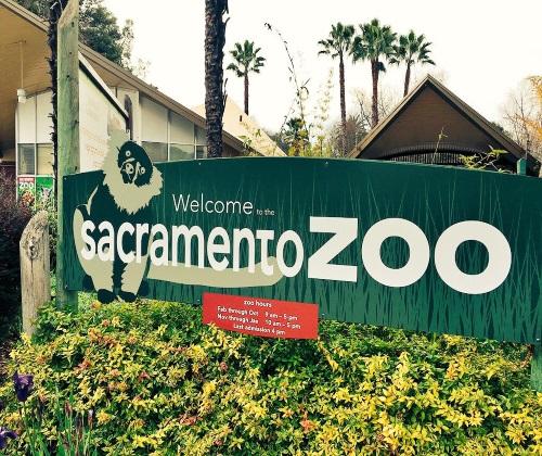 sacramento-zoo.jpg