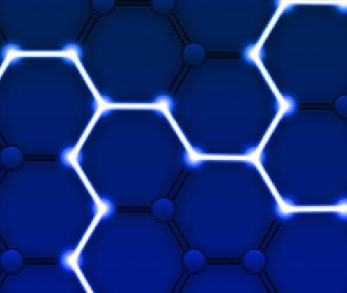 Blockchain network