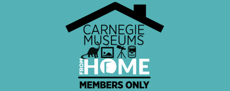 Source: Carnegie Museums