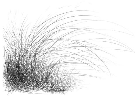 linien1_klein.jpg