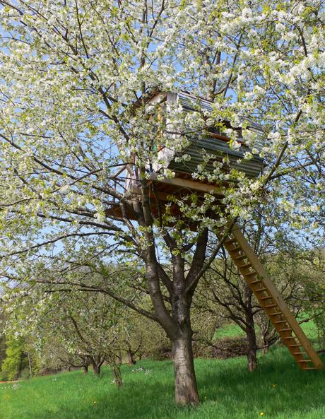baumhaus_spring.jpg