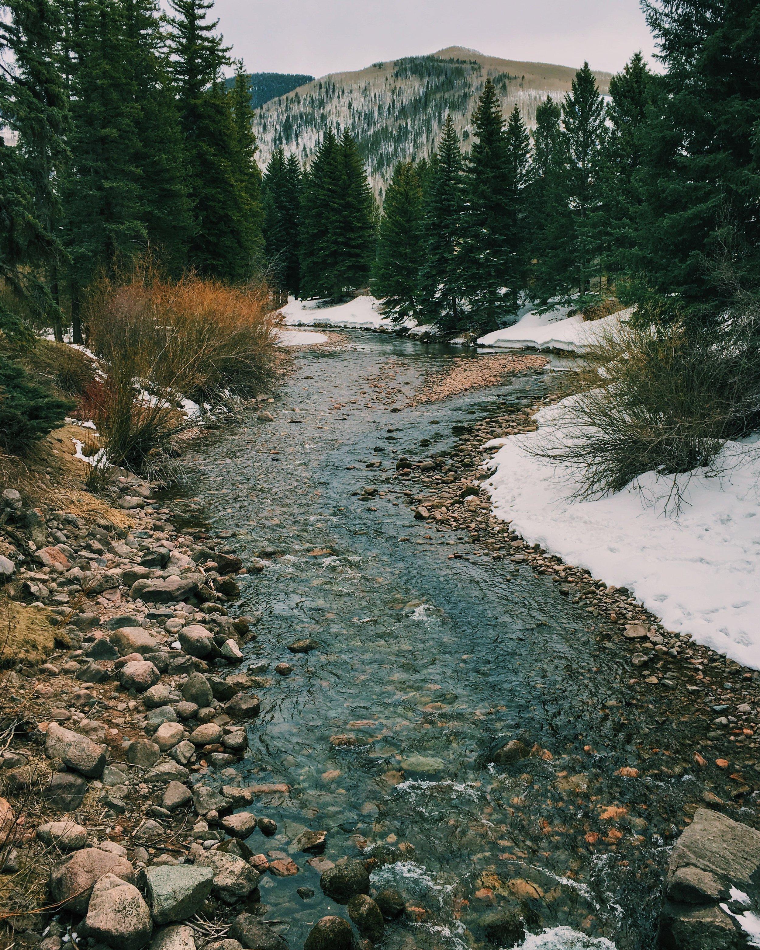 18 Snowy Day - Catherine Buie.jpg