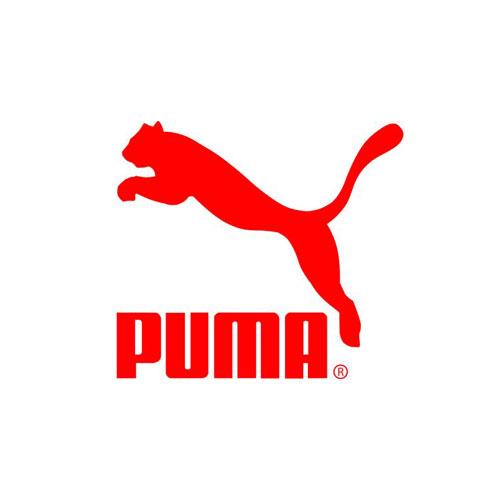 Client-Puma.jpg