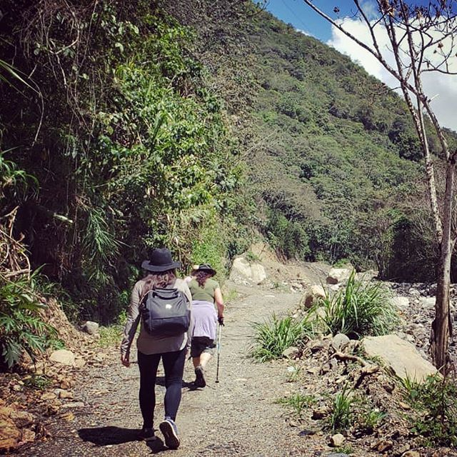 Journey to Montana Madre Selva. It was just a taste of the jungle. I saw bright-colored birds I hadn't seen before. I feel refreshed! I hope to own a piece of this land to be sure the old trees aren't cut down! #peru #montanamadreselva #laselva