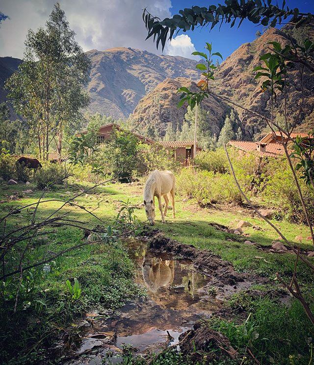 Just appreciating the place I live! #huaran #sacredvalley #magicland