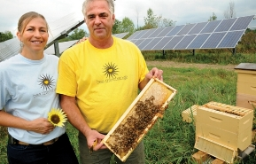 Mike Kiernan and Tanya Kiernan of bee the change standing with bees on a honeycomb in front of solar panels