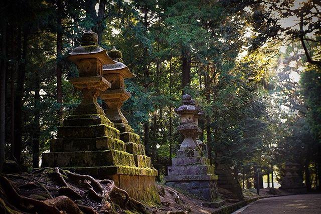 Some of the sculptures, spirit houses and statues around Japan. Love these old shrines. . . . #japan #tourjapan #shrine #shrines #japanshrine #inari #inarifox #inarishrine #fushimiinari #kyoto #nara #narajapan #narapark #singingbowl #asakusa #tokyo #asakusatemple #oldthings #history #spirithouse #buddha #shinto