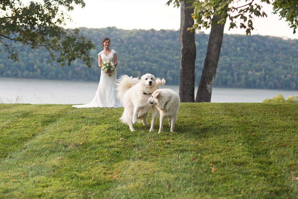 private_farm_wedding_photography_detailed.jpg