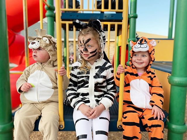 Our little zoo crew at Halloween! 💛