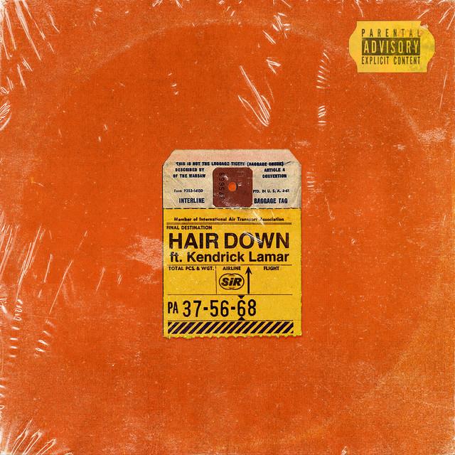 SiR Hair Down