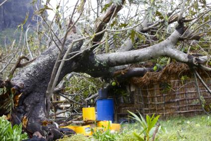 elena-levon-fiji-cyclone-winston-yalobi-village-waya-island-yasawa-truth-government-us-peace-corps-cowards-fiji-tourism-religion-72.jpg