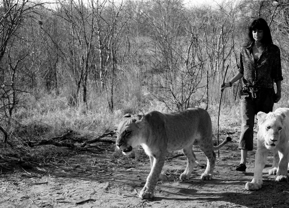 livingstone_zambia_elena_levon_walking_with_lions_21.jpg