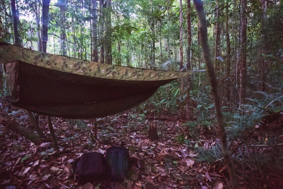 amazon-life-hammock-jungle.jpg