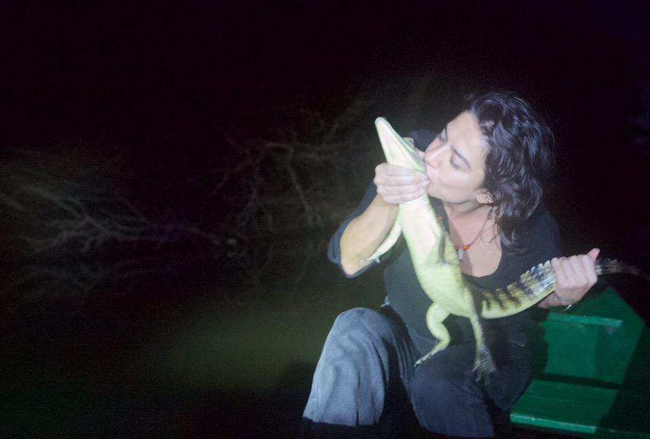 kissing caiman