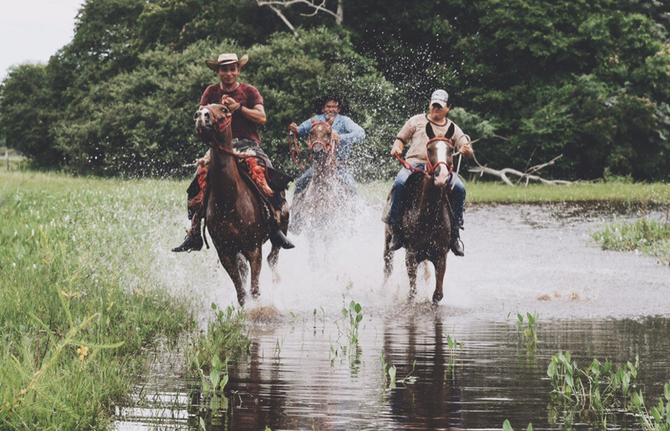 Local pantaneiros (cowboys) racing through the wetlands of Pantanal. Brazil