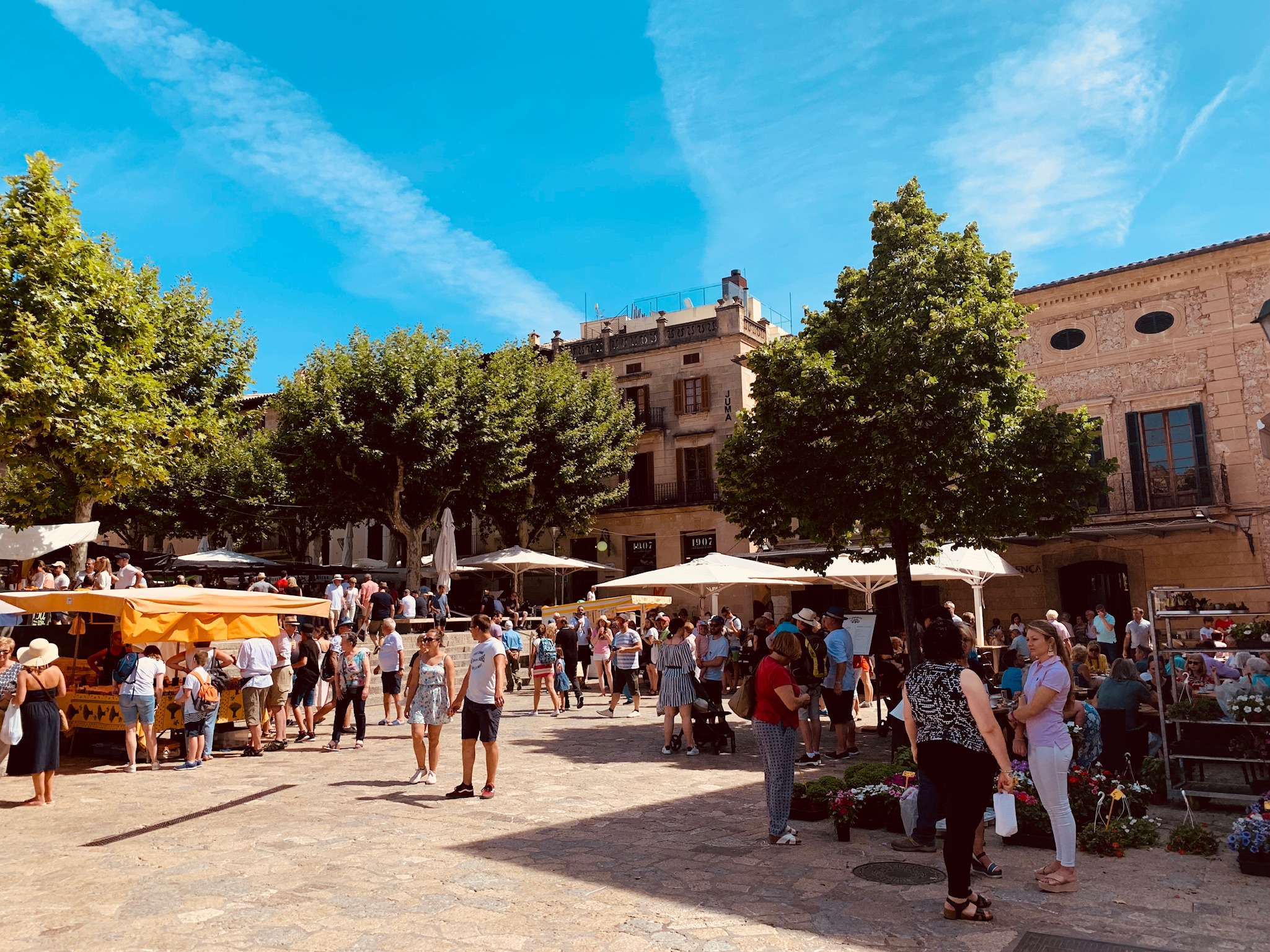 Major Placa Square Pollensa Mallorca