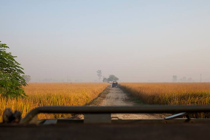 Our Indian producer lent us Jeeps and let us loose in the farmland of Sangrur