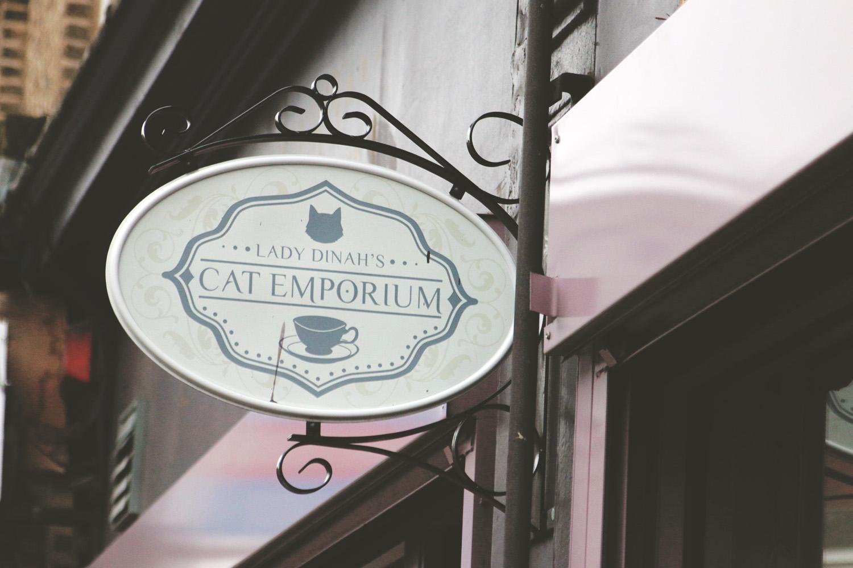 catcafe6.jpg