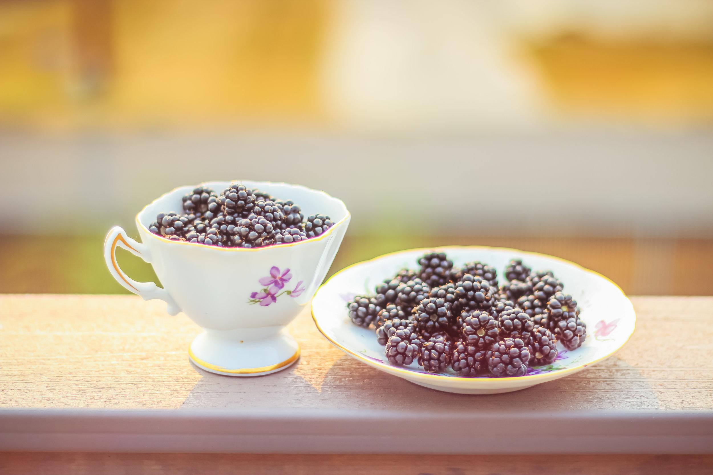 Blackberries-7.jpg