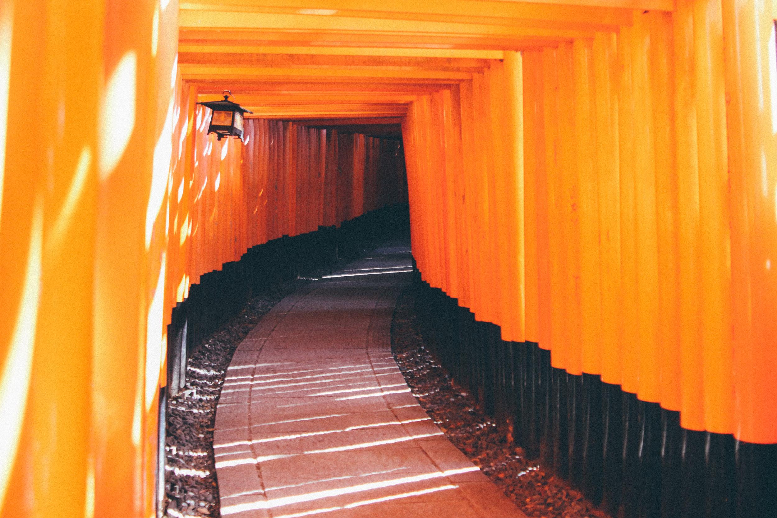 Kyoto-89.jpg