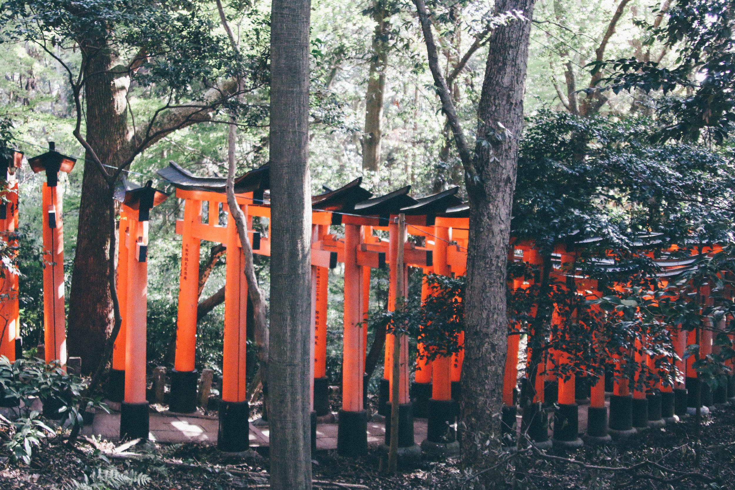 Kyoto-104.jpg