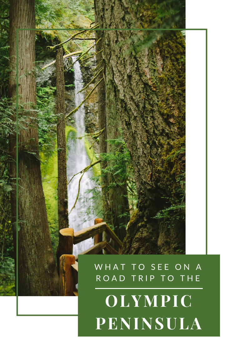 What to See on a Road Trip to the Olympic Peninsula