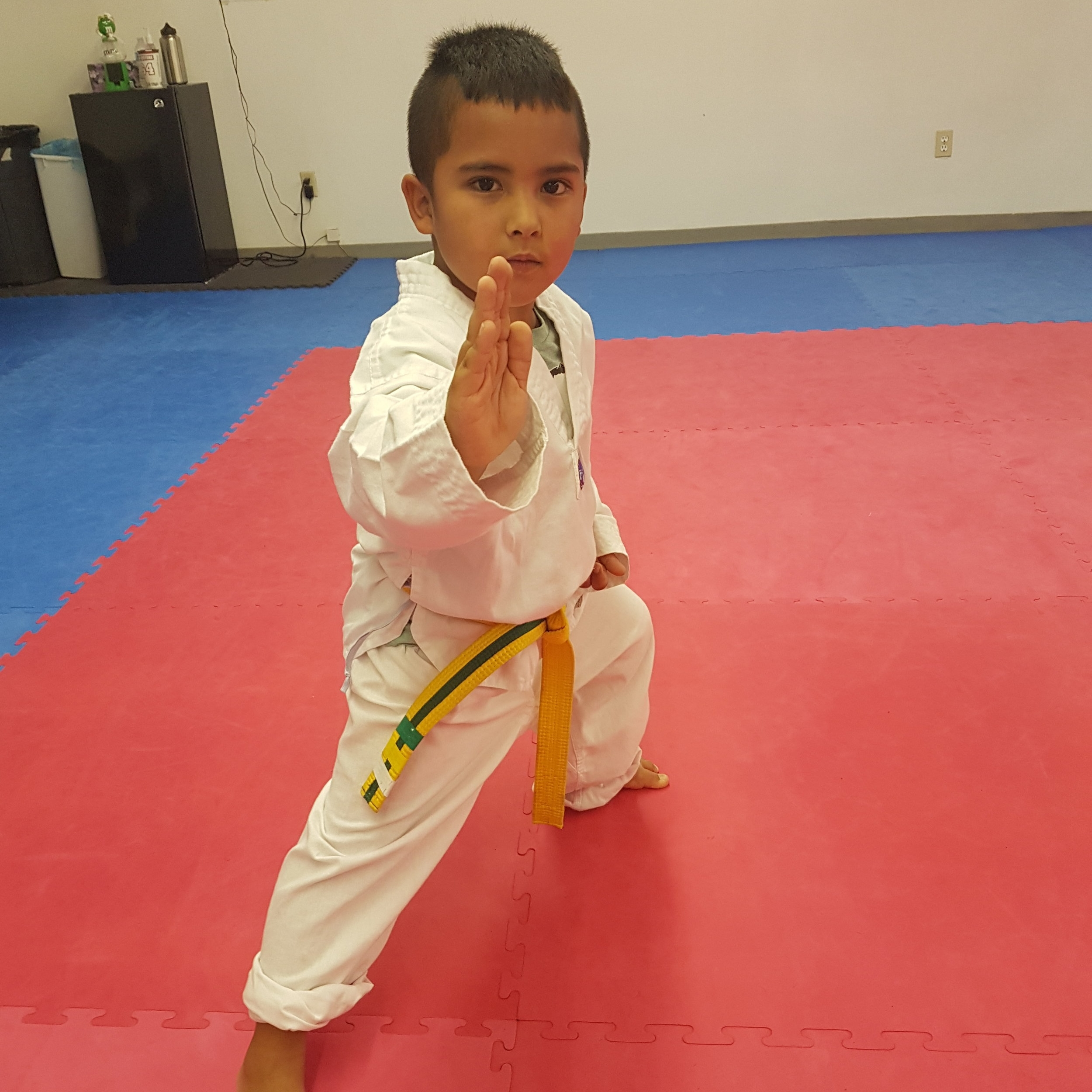Ages 4-7 All Levels - Mon/Wed 4:30-5:00 The emphasis for the 4 - 7 year old age group is on introducing martial arts as a fun activity. This will lay the groundwork for an ongoing interest in being physically active. We also develop the focus necessary to do activities in a structured environment. Our lessons focus on:Motor skills (ABCs: agility, balance, and coordination)Listening skills and following simple rulesDeveloping social skills for positive interactions with peers