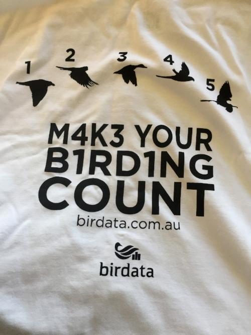make birding count.jpeg