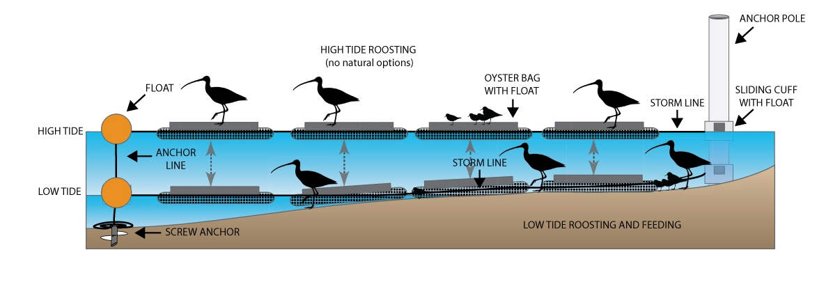 oyster-bag2.jpg