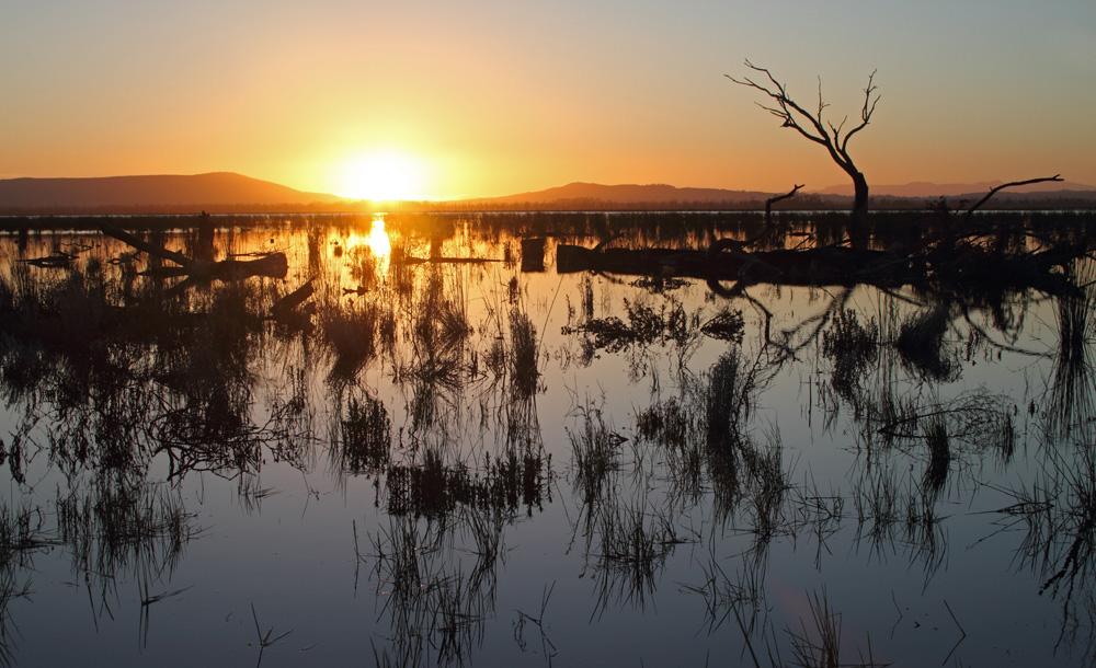 Sunset over Winton Swamp 9480 lr.jpg