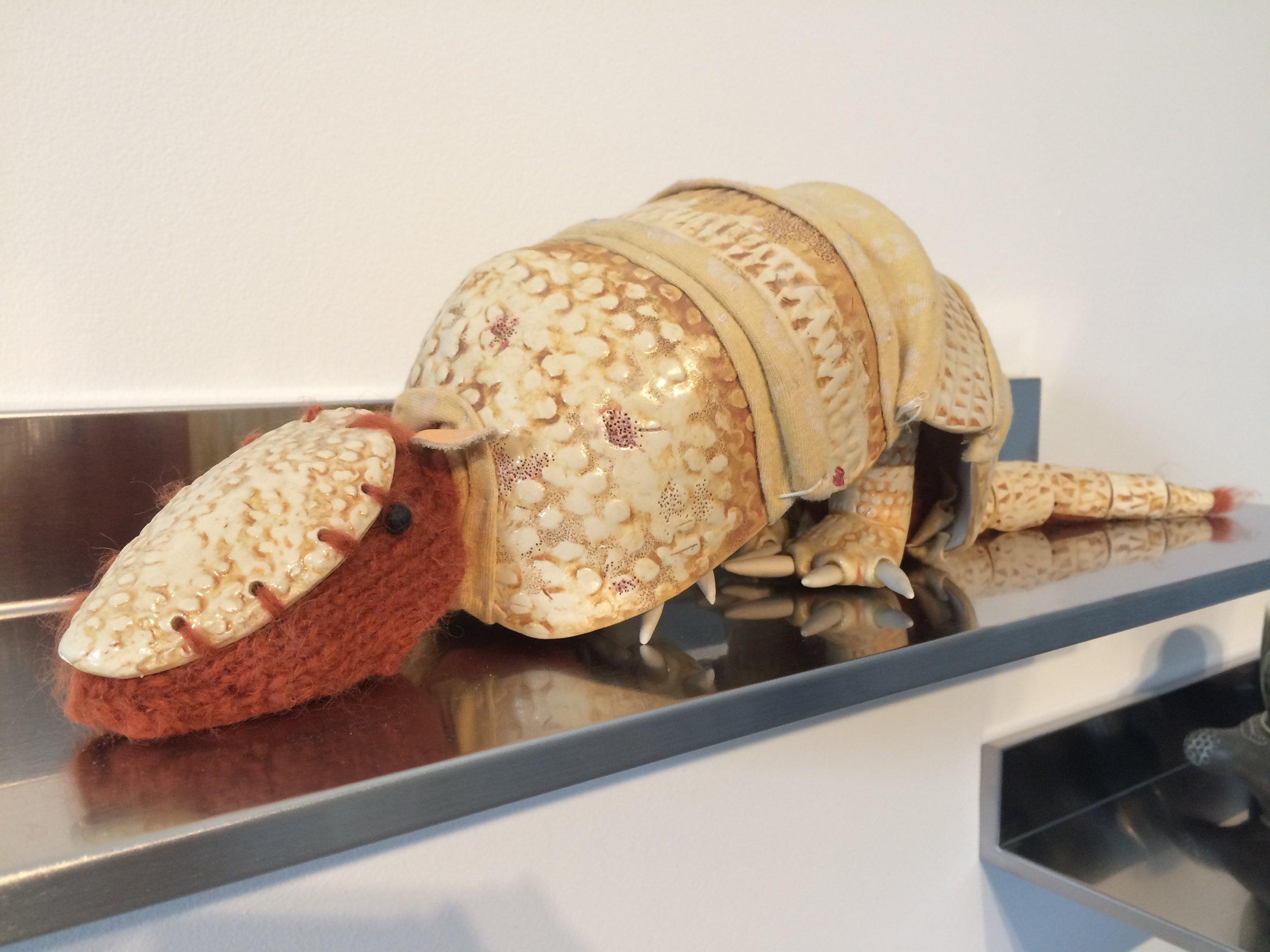 Armadillo  at the What Becomes  exhibition at Sanitary Tortilla Factory