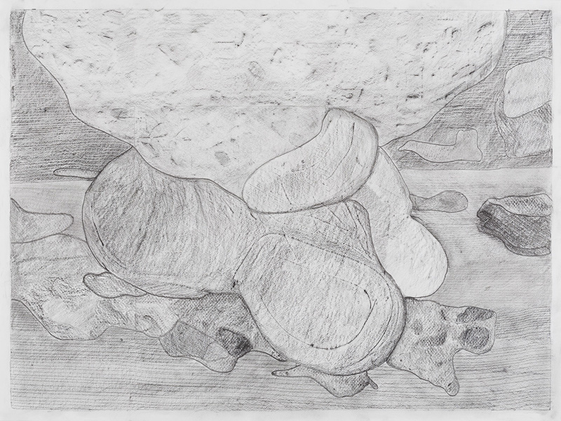 "Drawing 6,  2013. Graphite on paper. 18""x24"""