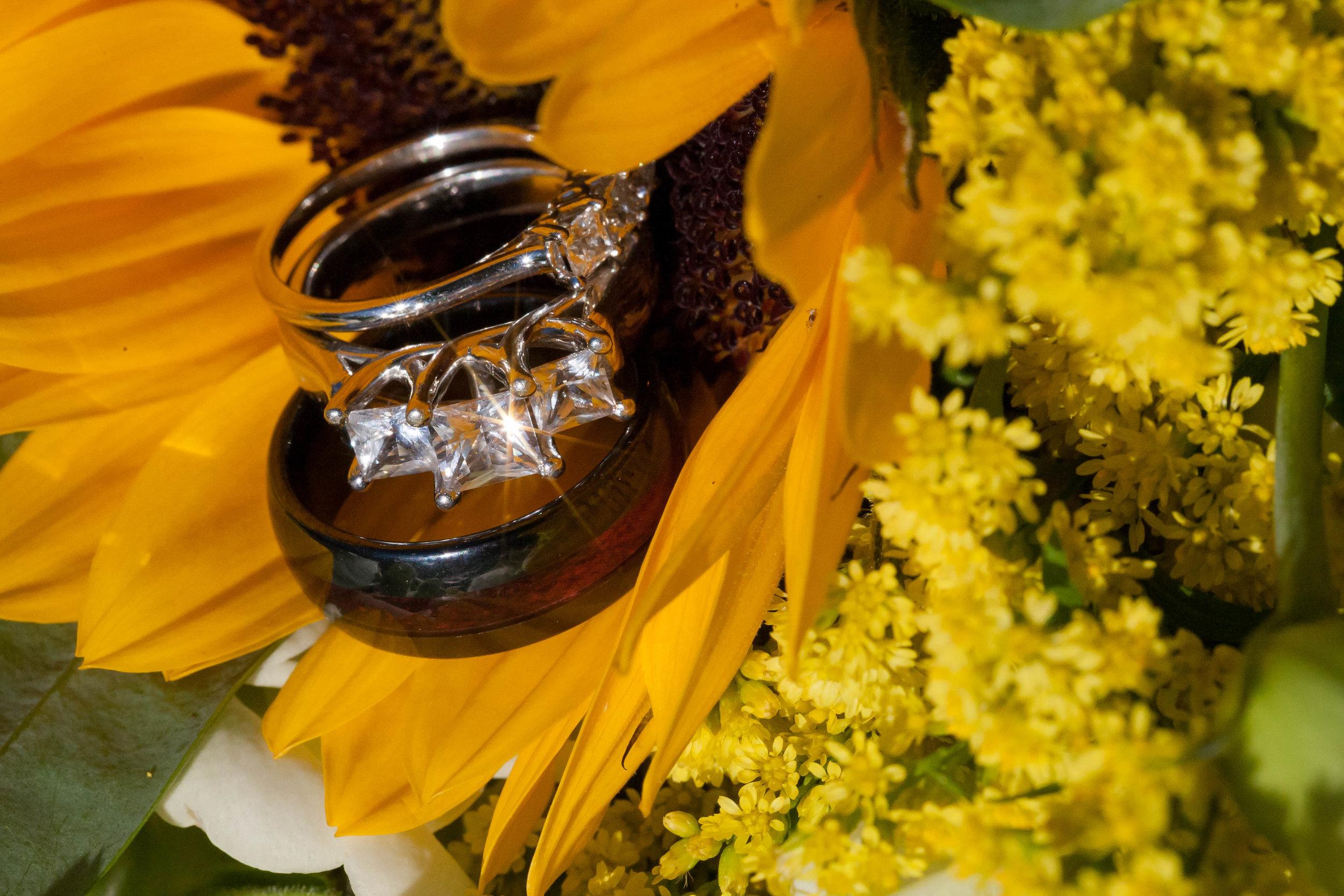 Rings close up