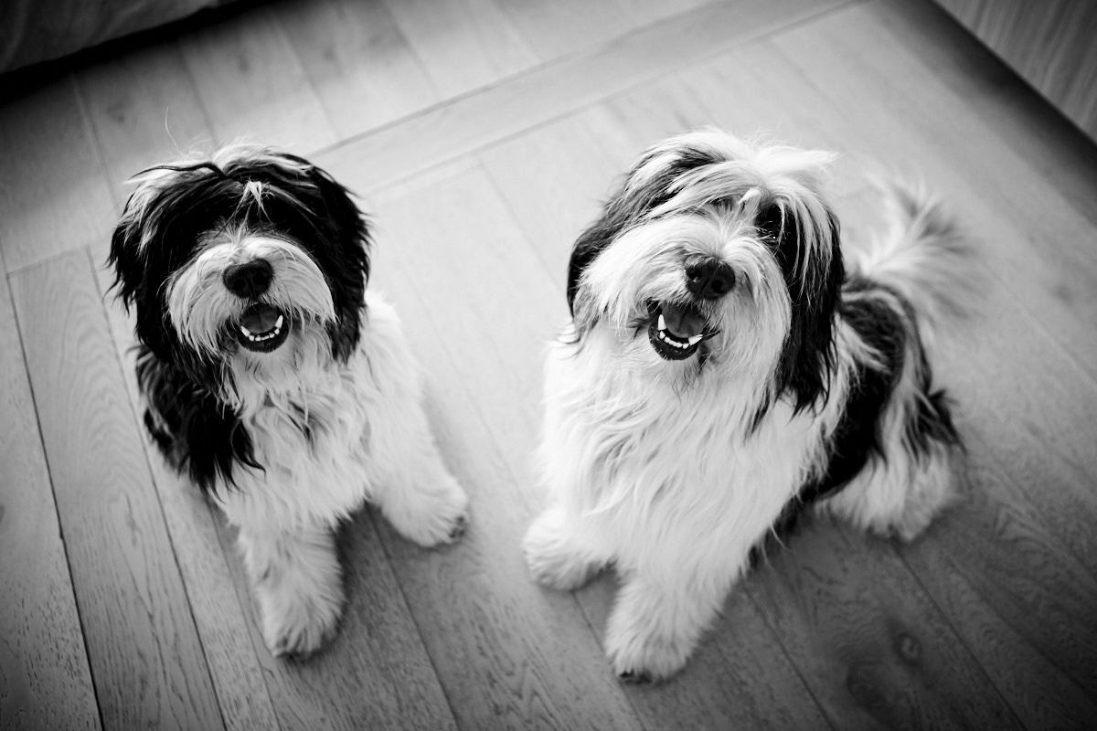 Boris&Ivan_016.jpg
