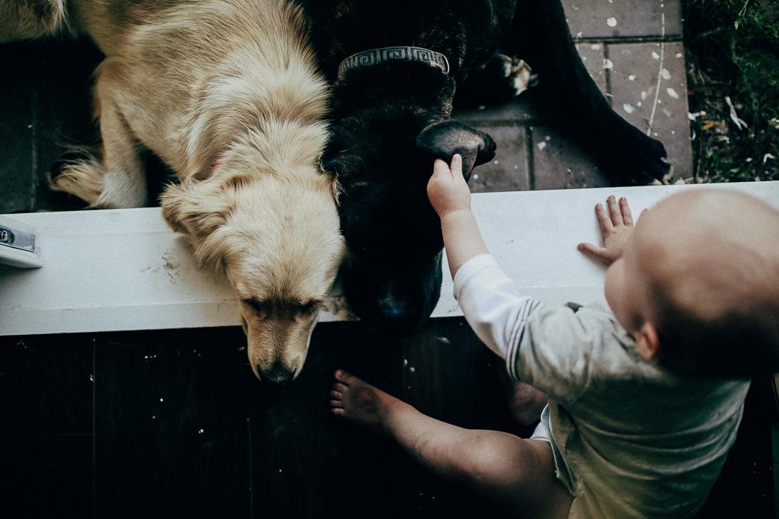 best-documentary-family-photography-sydney-6.jpg