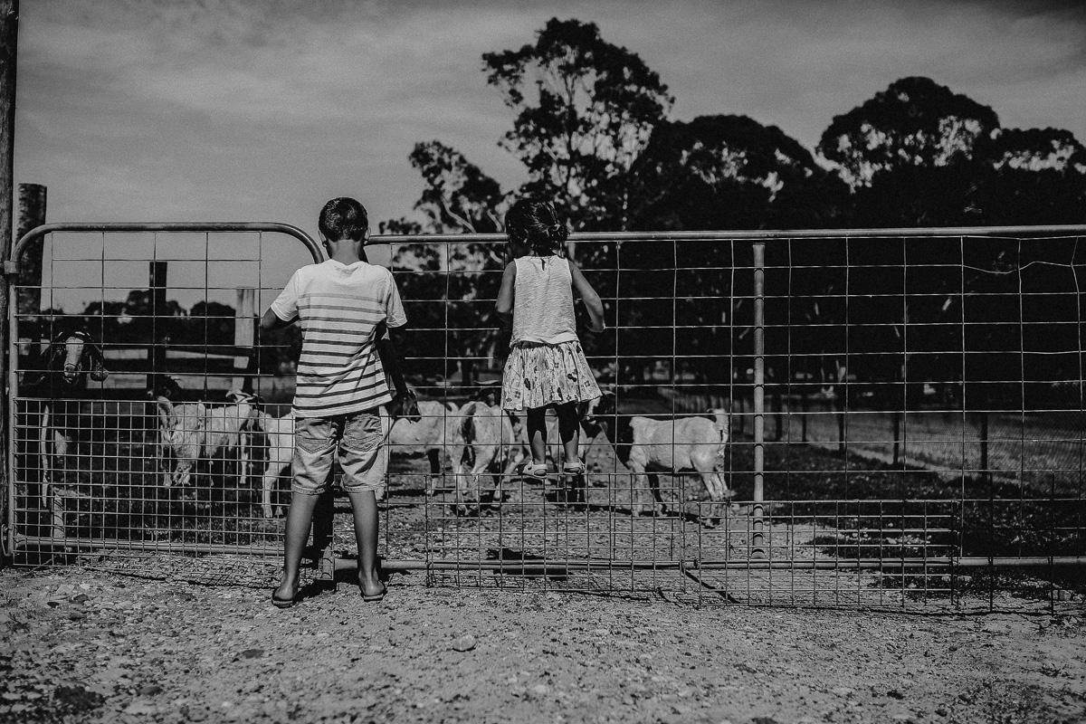 Family-Photography-Sydney-126.jpg